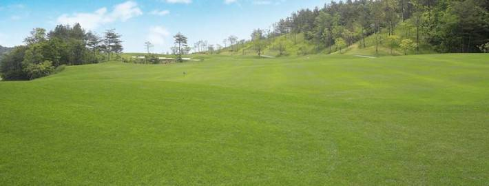 Verticutting Golf Course Maintenance
