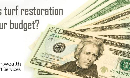How Does Turf Restoration Affect Budget 495x299 Golf Course Maintenance and Turf Services in Virginia