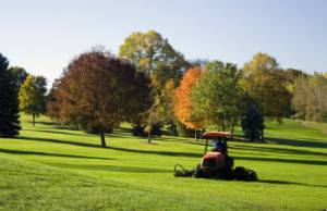 Make Your Athletic Field A Grass Carpet11