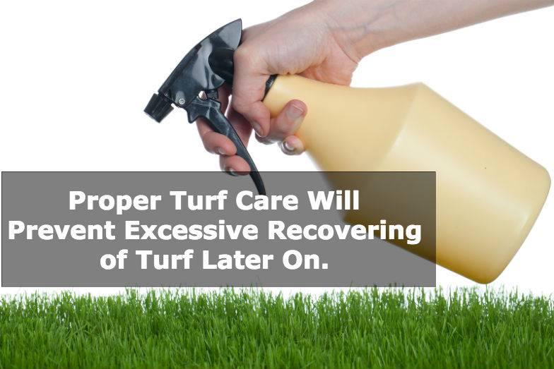 how to take care of turf