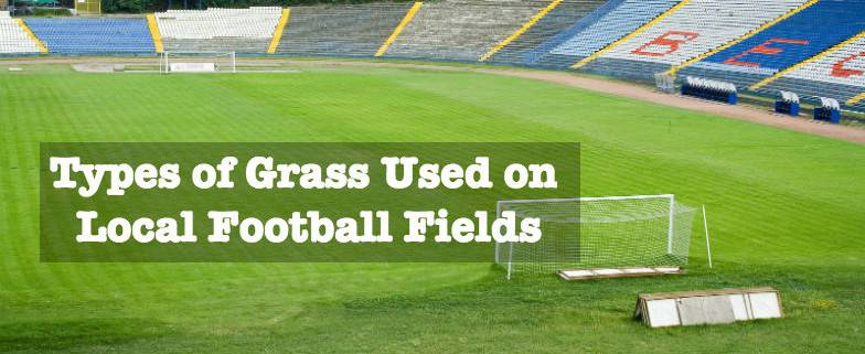 Types of Grass Used on Local Football Fields