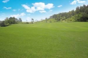 Verticutting Golf Course Maintenance