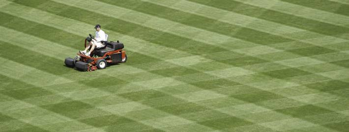 Aeration vs Verticutting