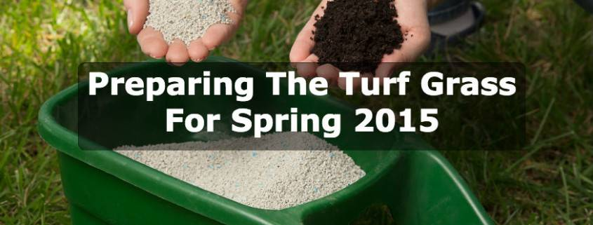 Preparing The Turf Grass For Spring 2015