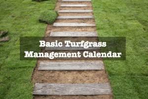Basic Turfgrass Management Calendar