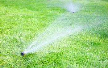How to Protect Your Turf From The Scorching Summer Sun