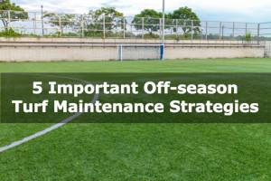 5 Important Off-season Turf Maintenance Strategies