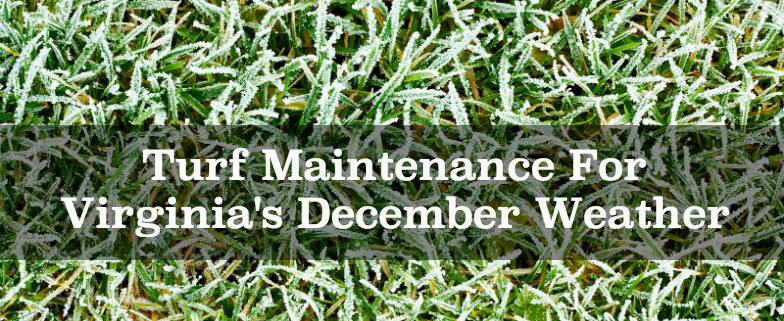 Turf Maintenance For Virginia's December Weather