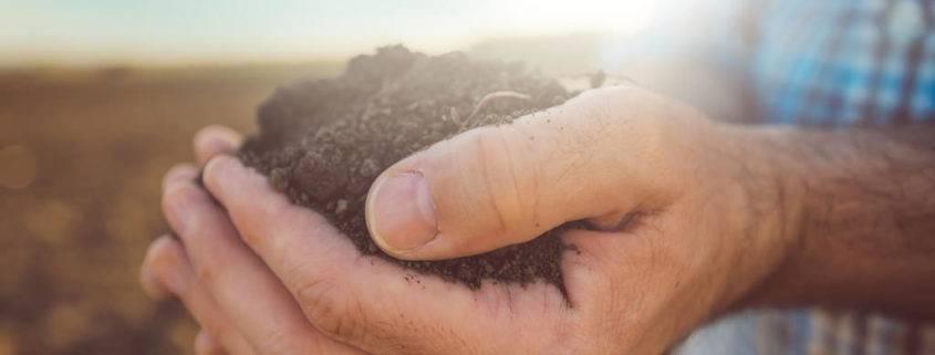 soil study